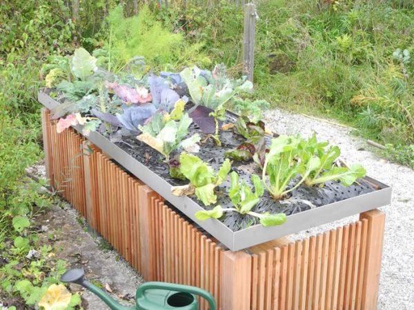 Tischbeet von Gartenakzente