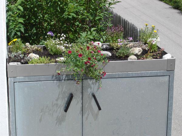 Betonbox mit bepflanzten Florina Pflanzrahmen