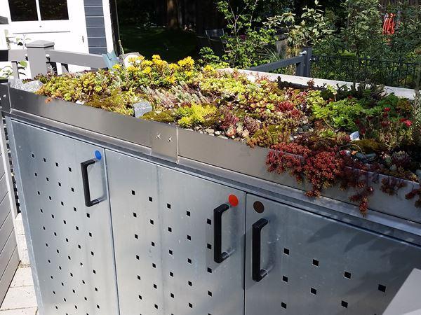 Pflanzrahmen für Betonmüllbox
